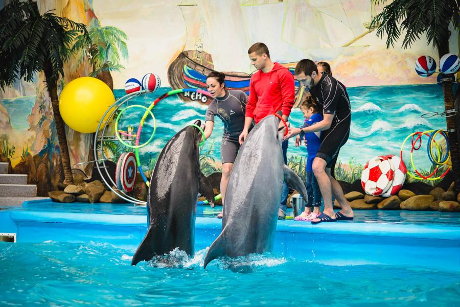 дельфинарий немо день рождения фото