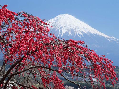 фото высокой горы Фудзи