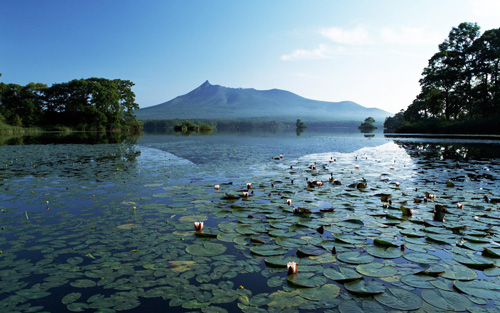 красивый водный пейзаж